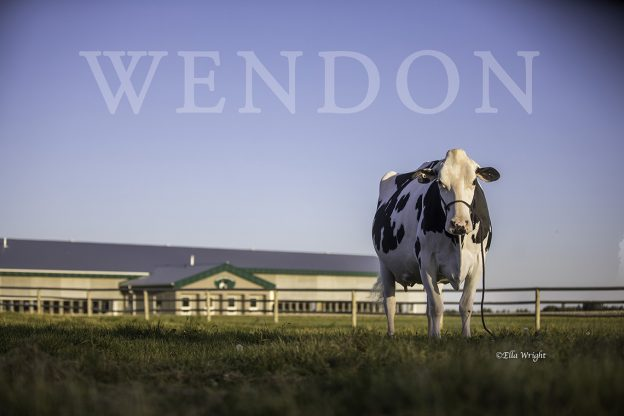 Wendon Dempsey Divida Barn 1M9A6821 web copy