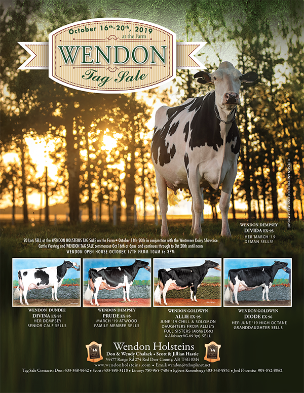 Wendon Tag Sale Catalogue