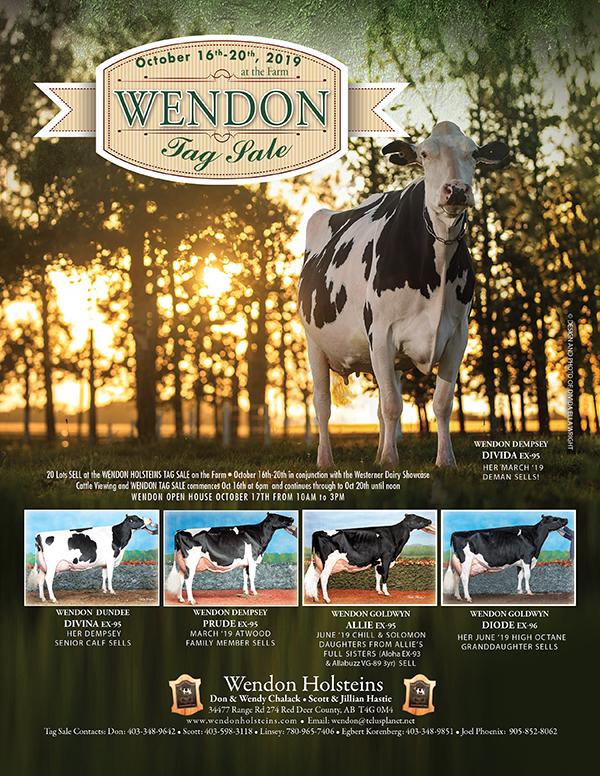 Wendon Tag Sale Catalogue
