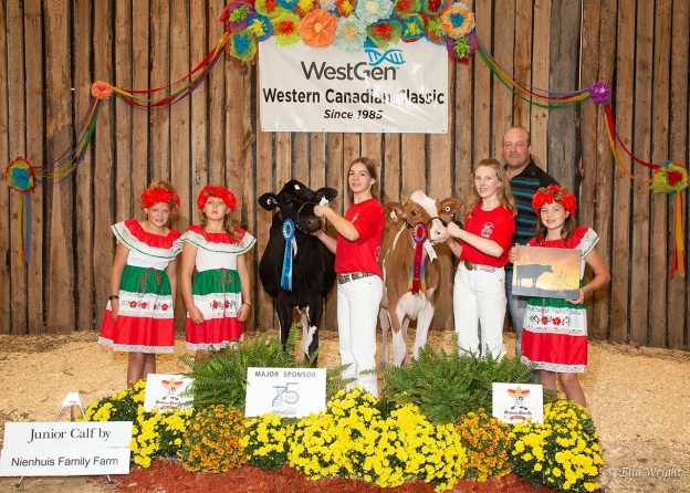 Reserve Grand Champion Roseland Unstopbabull Hailey-Red (Unstopabull), Paige Whalen, AB